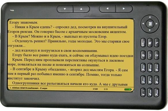 параметры электронной книги